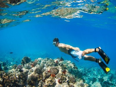 The Great Barrier Reef is #1 in the World to Visit