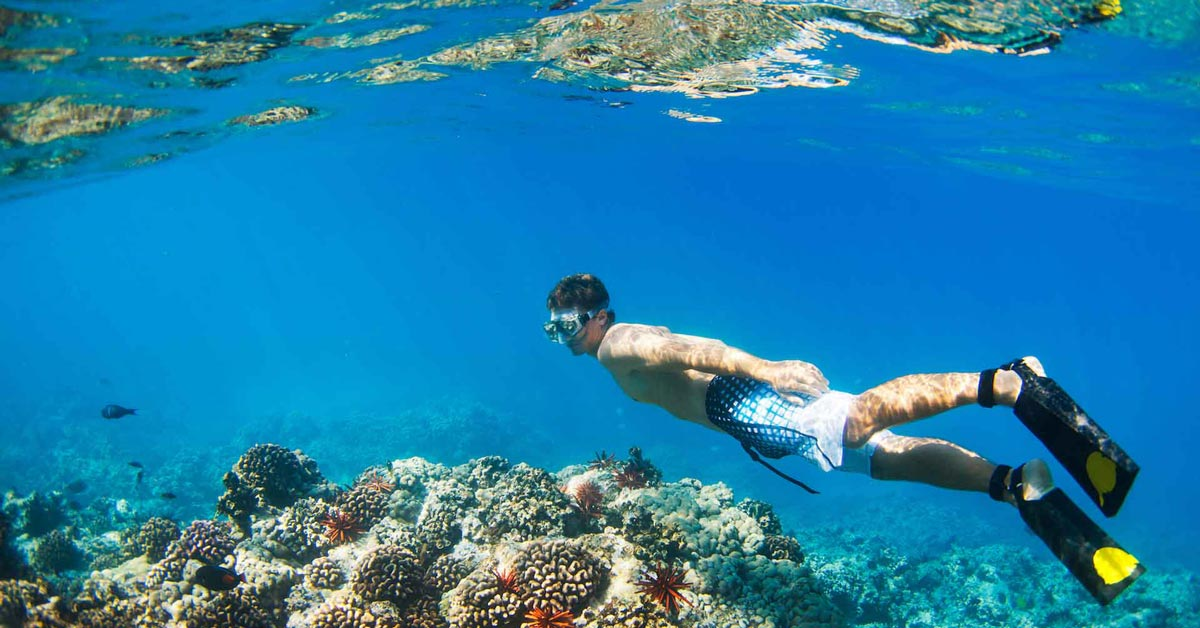 Hamilton Island Race Week VIP Style   Diving at the Great Barrier Reef