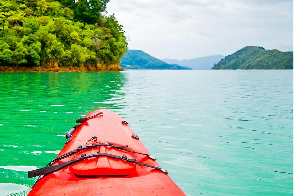 byron-bay-rainforest-fishing-experience