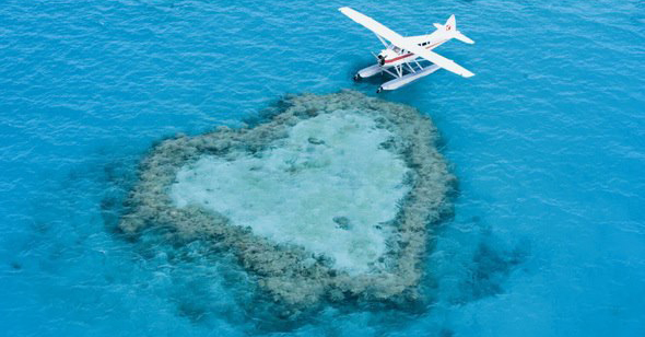 Seaplane Floating Above Heart Reef